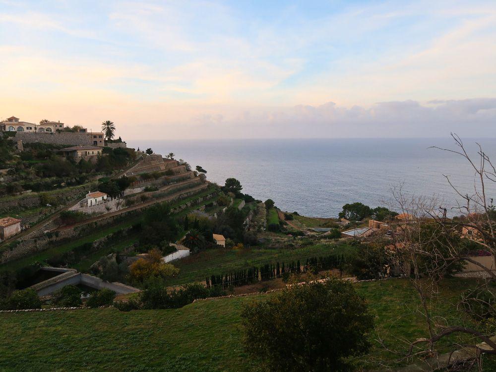 Marjadas de cultivo típicas de esta zona de Mallorca
