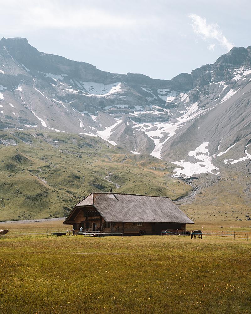 Tienes que subirde a Engstligenalp para ver uno los imprescindibles que ver en Adelboden